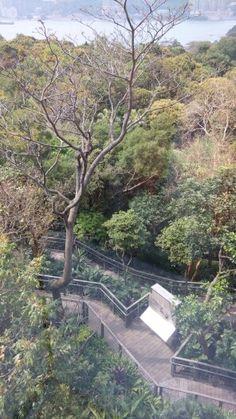Ma Wan Park, Hong Kong Field Trips, Hong Kong, Past, Landscape, Places, Life, Lugares, Landscape Paintings