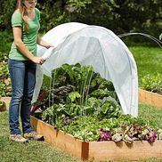Super Hoops for shade or warmth in the beastliest part of the 2 growing seasons