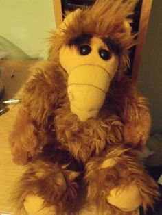 Alf Doll- I had this, and it talked :)