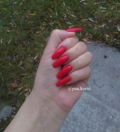 red nails, sexy red, long nails #longnails #hybridnails #nailart #neonail Red Nails, Long Nails, Nailart, Sexy, Red Toenails, Red Nail