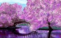 Bridge in a botanical garden on a summer's day surrounded by the blossoms of cherry trees. This is a digital painting inspired by a photograph of a garden bridge.