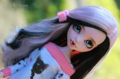 monster high, Draculaura Deluxe Edition