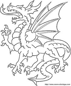 picture dragon4