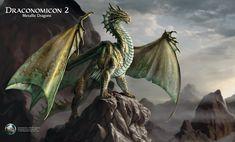 Dragonomicon Metalic Dragons - Bronze Dragon - p160
