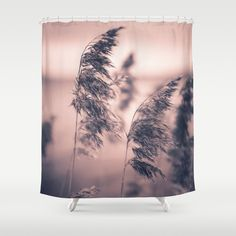 The rebellion Shower Curtain  , by Happy Melvin -   Available as T-Shirts & Hoodies, Stickers, iPhone Cases, Samsung Galaxy Cases, Posters, Home Decors, Tote Bags, Prints, Cards, Kids Clothes, iPad Cases, and Laptop Skins