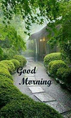 good morning wishes for a rainy day Images Photo Pics HD For Lover Good Morning Rainy Day, Good Morning Nature, Good Morning Beautiful Images, Morning Morning, Good Morning Photos, Good Morning Sunshine, Good Morning Gif, Good Morning Messages, Good Morning Greetings