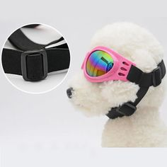 New Pet Dog Sunglasses //Price: $8.51 & FREE Shipping //     #Cool