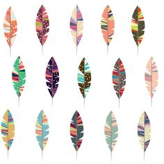 Set of 15 High Resolution Funky Fun Feathers Clip by ElmStStudio, $4.00