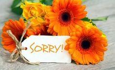 Sich richtig entschuldigen