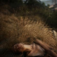We are only part of a dream/   Katia Chausheva