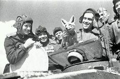 Советские танкисты со своим питомцем – любимицей лисичкой Трофейкой. Ленинградский фронт, 1944 г