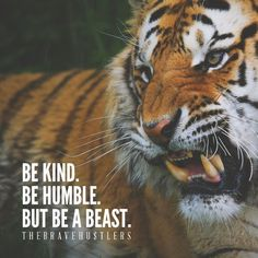 Strong stay strong quotes, fierce quotes, brave quotes, be humble quotes,. Tiger Quotes, Lion Quotes, Brave Quotes, Animal Quotes, Fierce Quotes, Stay Strong Quotes, Badass Quotes, Attitude Quotes, Be Humble Quotes