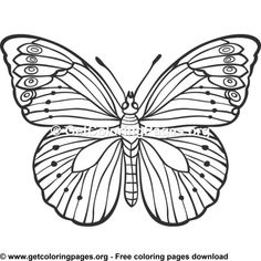 Butterfly 18 Coloring Pages Insect Coloring Pages, Animal Coloring Pages, Adult Coloring Pages, Butterfly Template, Butterfly Design, Flower Pictures, Art Pages, Rock Painting, Wood Burning