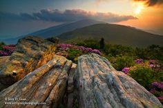 Roan Highlands © Jerry D. Greer