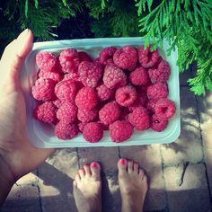 Sweeeet raspberry #nomnomnom 😊  #fruity #veganfoodshare #veganinhungary #foodphotography #yummy #hungarianblogger #summerishere #summerinthecountry