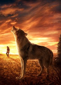 In the prehistoric past, Keda, a young and inexperienced hunter, struggles to return home after being separated from his tribe when bison hunting. All Movies, Action Movies, Movies Online, Movies And Tv Shows, Movie Tv, Imdb Movies, Streaming Vf, Streaming Movies, One Man Wolf Pack