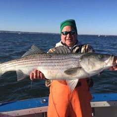 Sunday's biggest striped bass #stripedbass #fishing #bass #charter #fishingboat #nyc #brooklyn #emmons #fishingrod #boat #ocean #marina #instalike #instadaily #rockfishcharters #fishingnyc #brooklynfishingclub #fishingtrip #fishinglife #fishingboat #fishingdaily #love #instagood #nycfishing