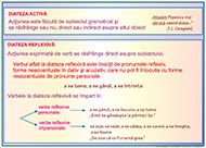 PLANSE LIMBA ROMANA   ROTAREXIM S.A.   Magazin virtual   Categorie produse Kids Education, Roman, Sad, School, Early Education