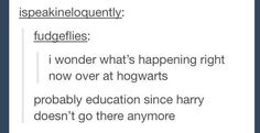 """This accurate description of what's going on at Hogwarts now. 31 Posts That Prove """"Harry Potter"""" Has The Funniest Fans Harry Potter Light, Harry Potter Books, Harry Potter Love, Harry Potter Fandom, Harry Potter Memes, Hogwarts, Slytherin, Yer A Wizard Harry, Mischief Managed"""