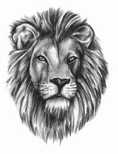 small line lion tattoo - Recherche Google
