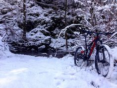 Gallita sulla neve  #Specialized #Stumpjumper #MTB #mountainbike #Snow #mountainbikes #MTBtrails #MTBtrail #trails #bike #bikelife #mountainbiking #MTBlove #bikelove #bikeporn #MTBlife #allMTB #MTBpictureoftheday #loves_MTB #Freeride #lifebehindbars #XC #XCMTB #XCbike #XCO by riccachiesa