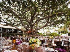 Southern California Outdoor Wedding Venues: Los Angeles San Diego Orange County Palm Springs