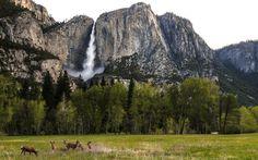 Yosemite Falls, California -  25 Awe-Inspiring Waterfalls to See Before You Die           | Travel + Leisure