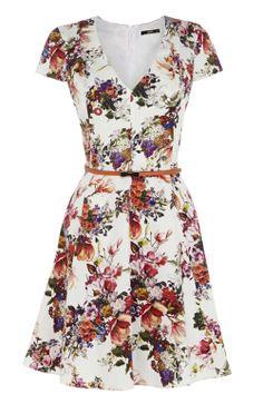 Lady Rose | Multi Botanical Garden Skater Dress | Oasis
