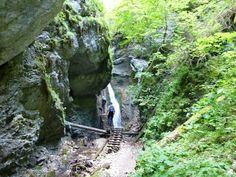 Veľký Sokol gorge, Slovak Paradise National Park, Košice region, Slovakia