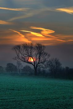 djferreira224:  Fire in the Sky by asheers on Flickr. Upper Boddington, England, United Kingdom