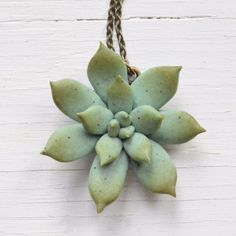 succulent pendant necklace polymer clay