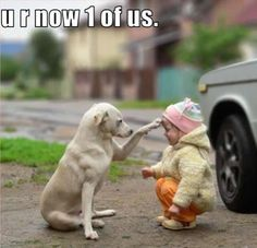 One of Us..cute dog and baby photo