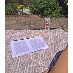 Prøver at narre min hjerne til at tro, at den faktisk hygger sig med eksamenslæsning i mors varme have... I det mindste kan jeg endelig få (én eller anden) farve  Jeg er efterhånden ligeglad om det bliver brun, rød eller mintgrøn!!!! ☀️☀️☀️☀️ #sommerferie#læseferie#whatsthedifference#summer#sun#aalborg#study#klm#so#borring#candy#cravings#energydrink#ineedit#cult#blegfed#doven#tannning#sunburned#whatever #Padgram