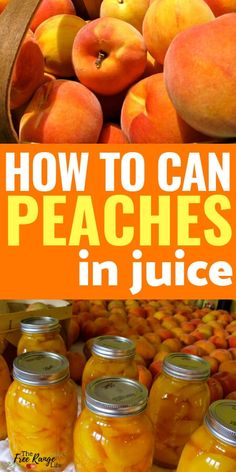 Canned Peaches Food preservation- Canning Recipes- How to Can Peaches in juice- with no added sugar!Food preservation- Canning Recipes- How to Can Peaches in juice- with no added sugar! Home Canning Recipes, Canning Tips, Jam Recipes, Cooker Recipes, Can Peaches Recipes, Pressure Canning Recipes, Canning Peach Recipes, Peach Jelly Recipe Canning, Food Storage