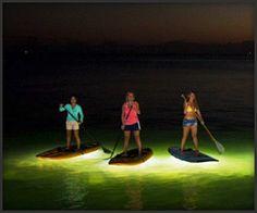 Nocqua 2000 Paddle Lighting