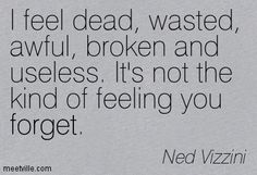 Ned Vizzini - there are more causes your pain, or rather to the continuation of your pain, and to the deep deep depth of your pain than just your body and your brain and your soul which contains your emotions.