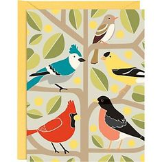 Paper Source Birds A2 Stationery