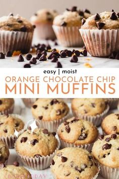 Simple, moist orange & chocolate chip mini muffins -- easy homemade recipe for the best muffins in a 24 cup mini muffin tin! One my favorite easy breakfast recipes for kids, with details on tools, how long to bake, etc.  #minimuffins #chocolatechip #chocolatechipmuffins #muffintin #muffinpan #muffins #breakfast #toddlers Mini Muffins, Choc Chip Muffins Recipe, Homemade Chocolate Chip Muffins, Mini Chocolate Chips, Pastry Recipes, Muffin Recipes, Dessert Recipes, Breakfast Recipes, Brunch Recipes