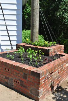 Salvaged bricks stacked dry without mortar make effective raised