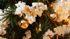 Want to know how to make a popcorn garland? If you're in need of some instructions on stringing popcorn, you've come to the right place. Kids can make it!