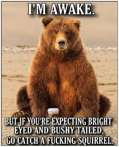 """13 Super quotes funny laughing truths 22 Ideas Funny Quotes Laugh and funny quotes inspirational """"The fine line between roaring with laughter an Funny Animal Jokes, Funny Animal Pictures, Animal Memes, Funny Animals, Funny Jokes, Hilarious, Funny Insults, Meme Pictures, Crazy Funny Memes"""