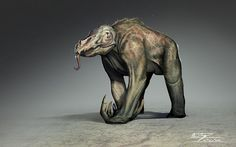 Creature Collection on Behance