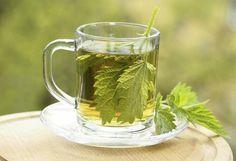 Nettle Tea Benefits, Nettle Leaf Tea, Natural Appetite Suppressant, Anti Cellulite, Circulation Sanguine, Dry Leaf, Tea Blends, Herbal Tea, Tea Recipes