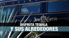 4 planes para disfrutar Tequila y sus alrededores en familia