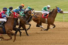 Taking horse racing photos can be very rewarding. The fast paced action of horses in motion frozen in time can often...