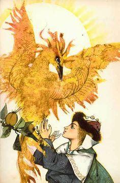 The Firebird, Pictures by Luděk Maňásek