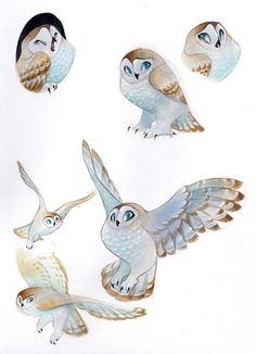 Some owls