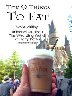 What to Eat at Universal Orlando and The Wizarding World of Harry Potter - Paris Disneyland Pictures Universal Orlando, Universal Hollywood, Disney Universal Studios, Universal Studios Florida, Harry Potter Universal, Universal Studios Horror Nights, Orlando Travel, Orlando Vacation, Florida Vacation