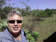 Deus quer que ajudemos aos Animais.  Blogs de Aguia SemrumoPortuguês (Brasil) Novo blogSemrumo 499225 visualizações de página - 11453 postagens, última publicação em 28/08/2016   Semrumo Sinopse leve, boa informação com objetivo de dar cara nova ao padrão comportamental de leitura Blogger.