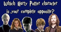 Which Harry Potter Character Is Your Complete Opposite  You got: Draco  Draco is self-serving, generally pretty rude to other people, and really just kind of a dick. But not you! You're friendly, loyal, and would know not to insult a Hippogriff.